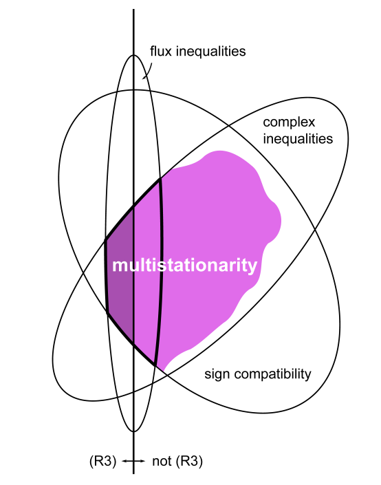 Relation between constraints and multistationarity in a network.